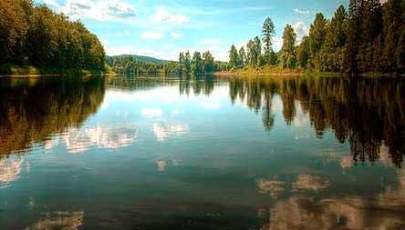Перспективные места ловли леща на реке фотография