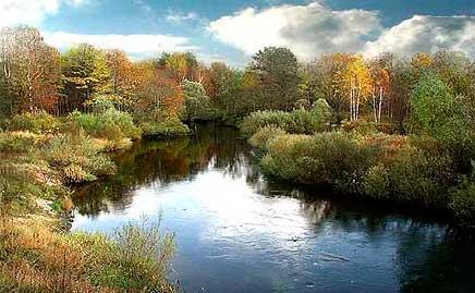 Места летней ловли леща в русле реки фотография