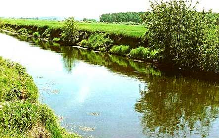 Ловля леща на малой реке в яме фотография