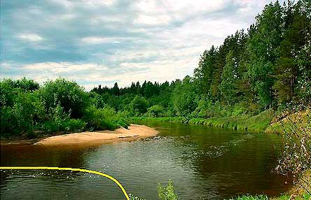 Ловля леща на свале в яму реки фотография