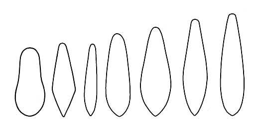 Контуры лепестков зимних отвесных блесен чертеж